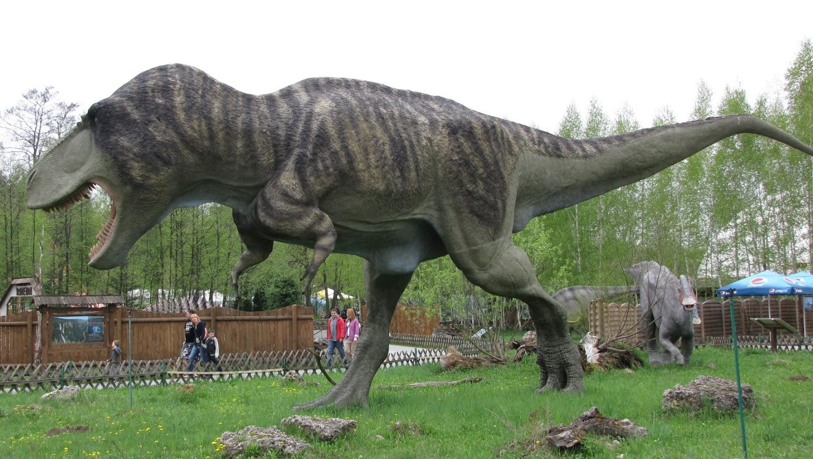 Tyranosaurus, by Marcin Polak from Warszawa / Warsaw, Polska / Poland Tyranozaur Rex Uploaded by FunkMonk, CC BY 2.0, https://commons.wikimedia.org/w/index.php?curid=31365817